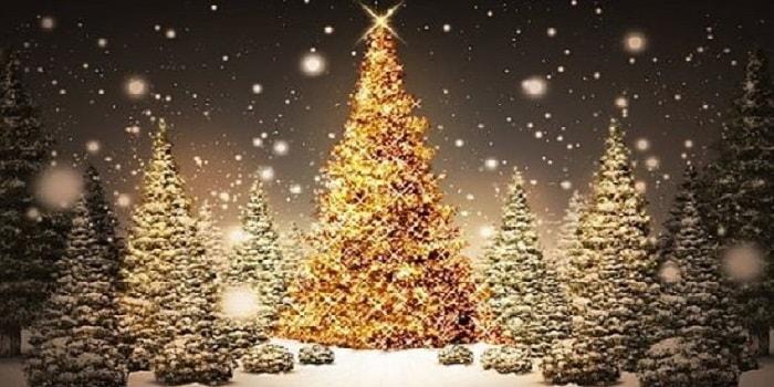Bellissime Frasi Di Natale.Le Piu Belle Frasi Per Gli Auguri Di Natale