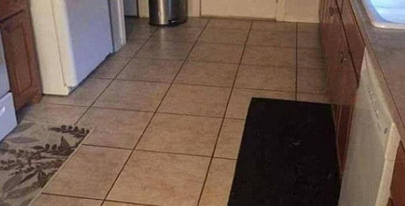 Riesci a trovare il cane? Il 99% delle persone non ci riesce!