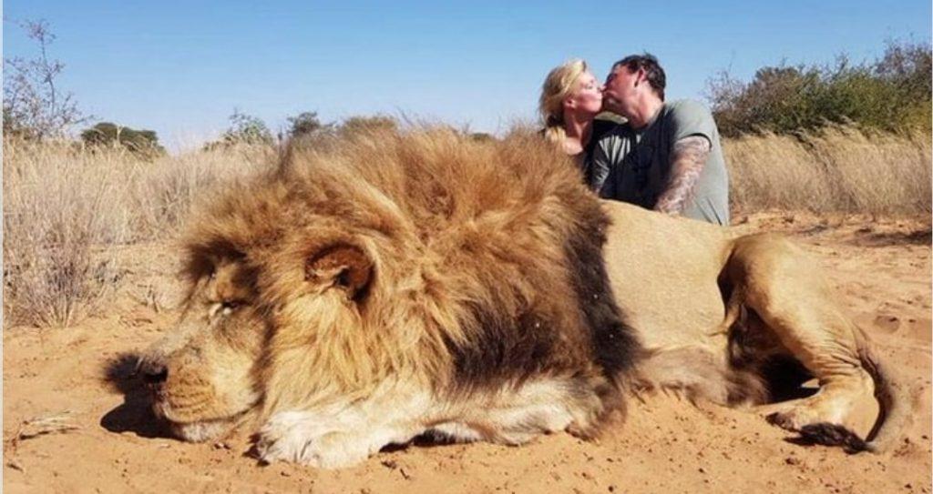 Coppia si bacia felicemente dietro il leone appena  ucciso: la rivolta del web