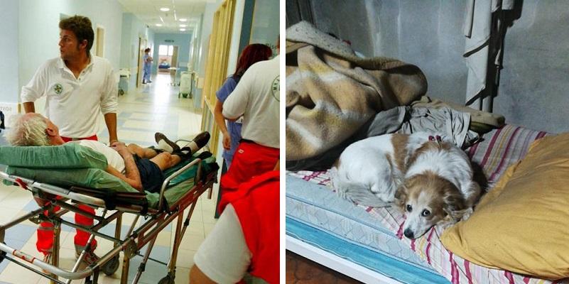 Un anziano malato viene ricoverato in Ospedale, carabiniere adotta il suo cane