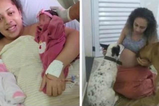 Gemelline di 26 giorni sbranate dal cane di famiglia
