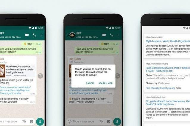 WhatsApp, arrivata in Italia la nuova funzione contro le bufale